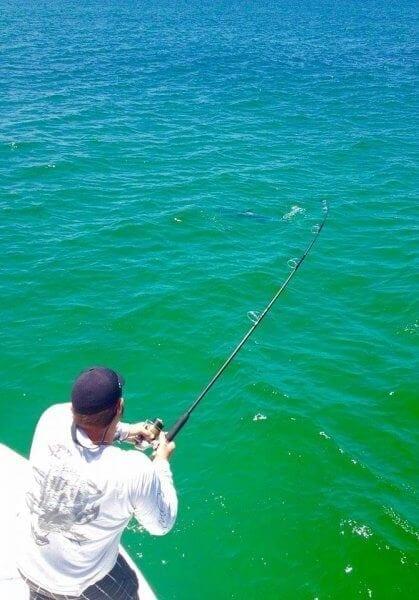 Top Water Fishing
