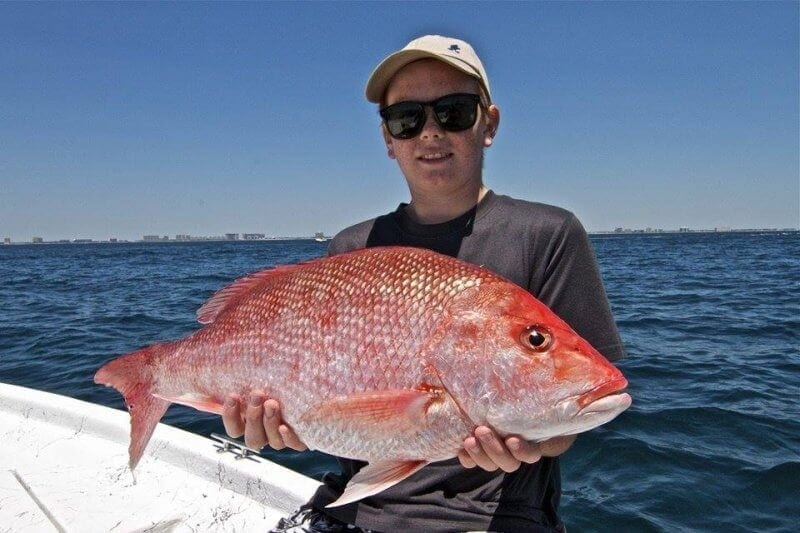 Boy With Red Snapper Catch