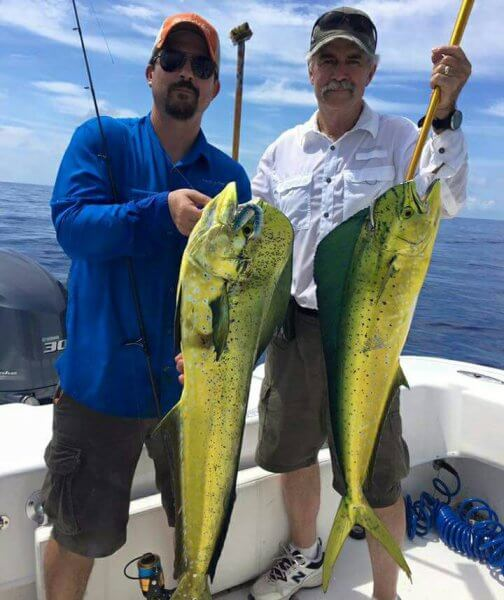Mahi Mahi Caught During Swordfish Trip
