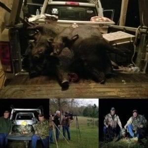Hog Hunting Trip With Intercoastal Safaris