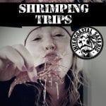 Shrimping Trips