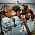 coastal duck hunt