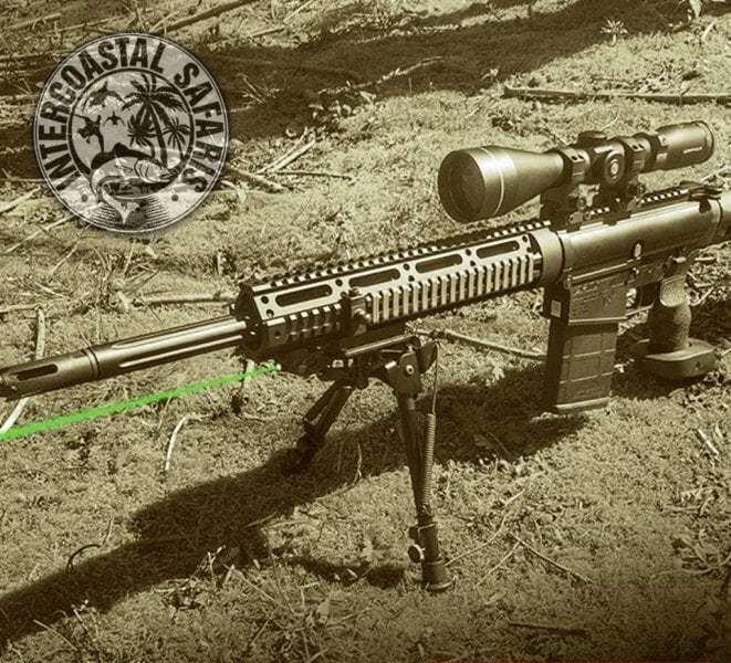 Hog & Coyote Hunt 3