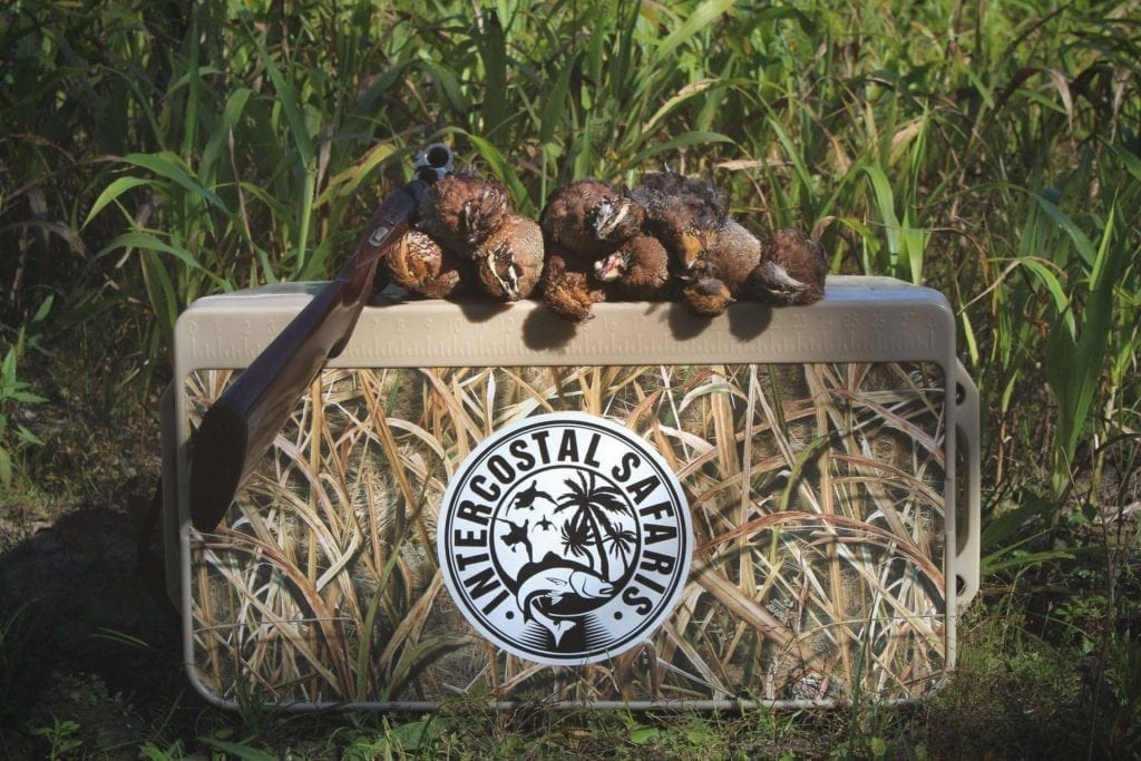 South Alabama Quail Hunting 17