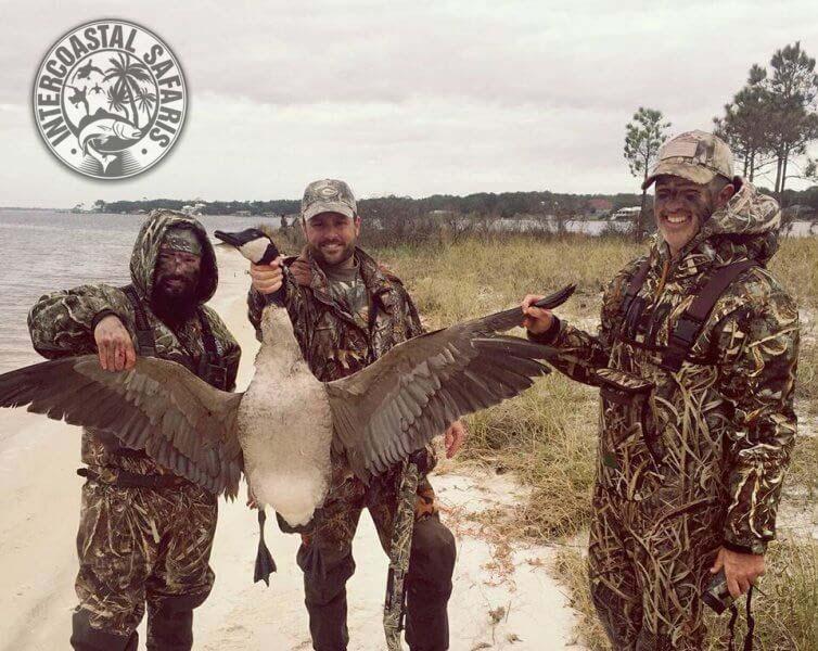 Coastal Duck Hunting 2