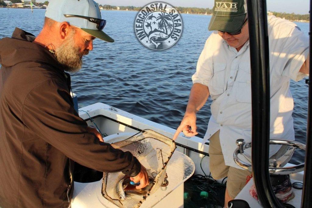 Saltwater Fishing School 8