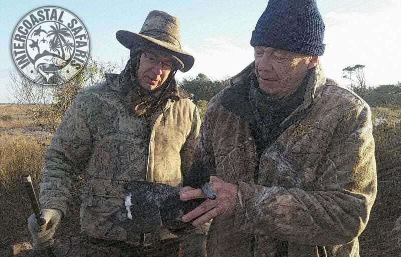 Coastal Duck Hunting 4