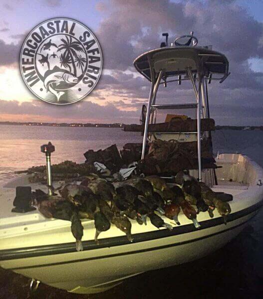 Coastal Duck Hunting 13