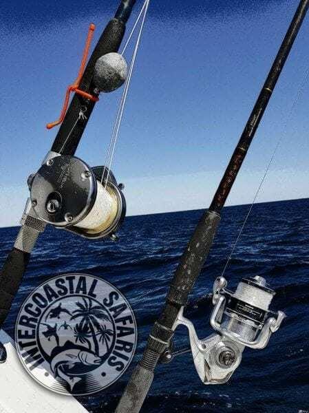 Saltwater Fishing School 15