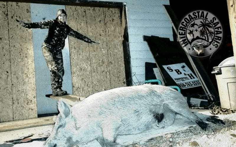 Hog & Coyote Hunt 13