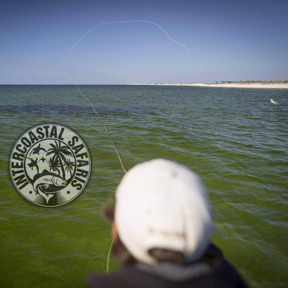 Saltwater Fly Fishing 13