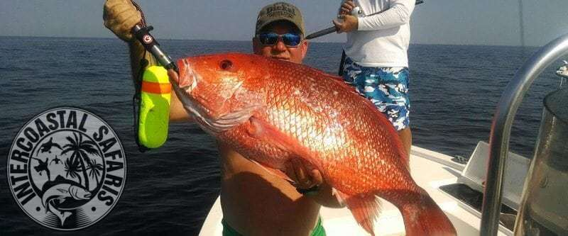 Red Snapper Fishing 13