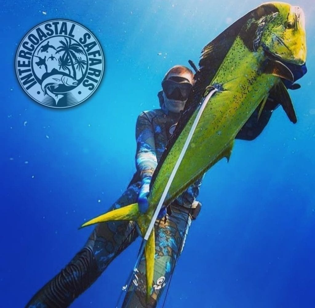 Spearfishing & Scuba Diving 9