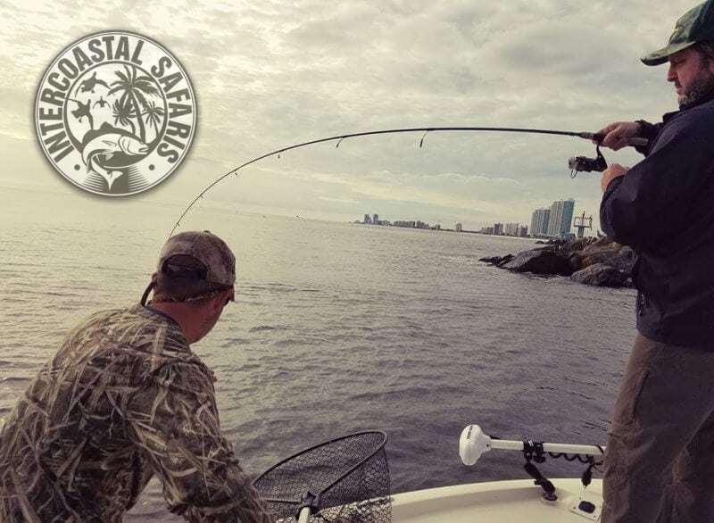 Saltwater Fishing School 5