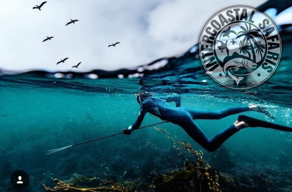 Spearfishing & Scuba Diving 12