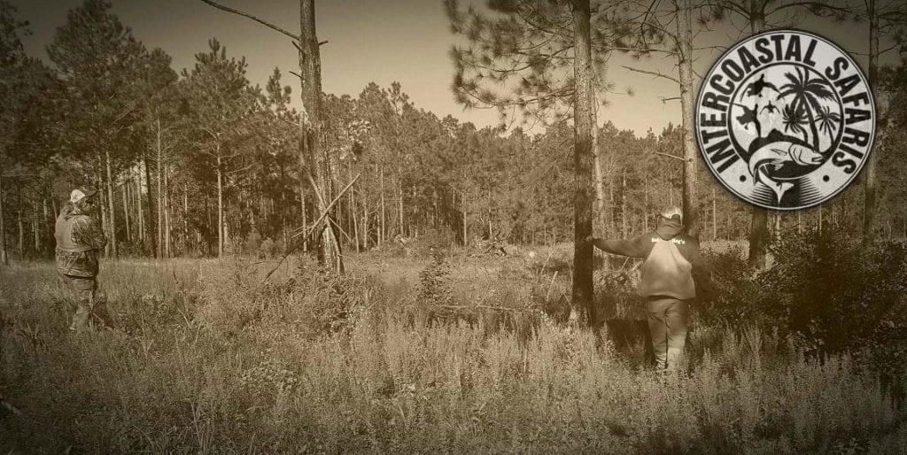 South Alabama Quail Hunting 5