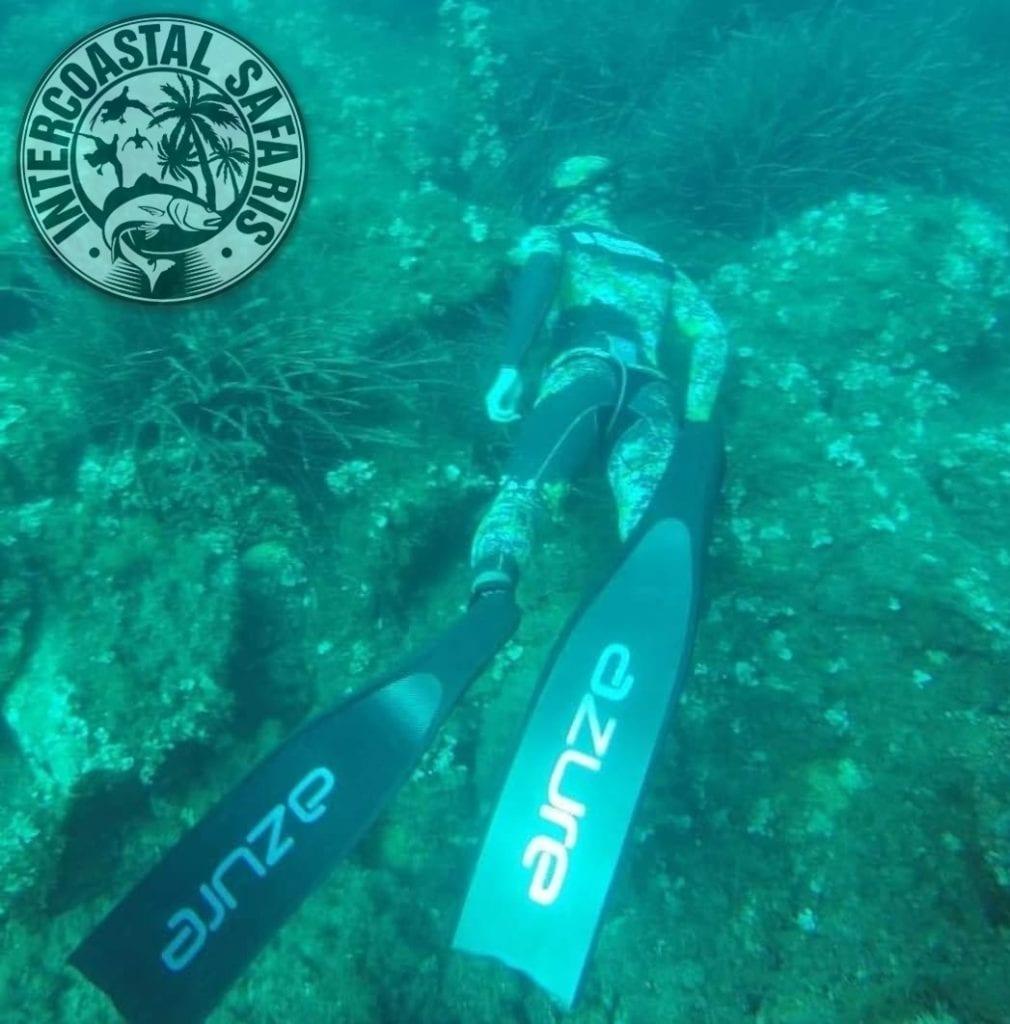 Spearfishing & Scuba Diving 1